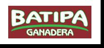 Batipa