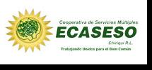 ECASESO